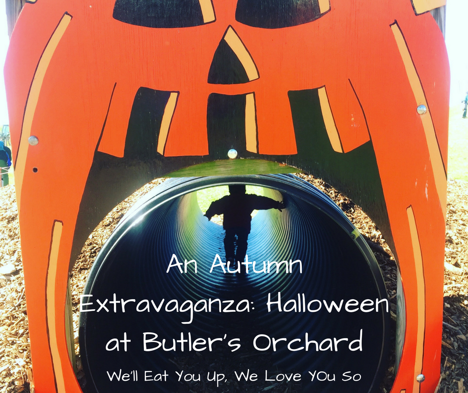 """Photo: Child walking through a tunnel framed by a jack-o-lantern. Text: """"An Autumn Extravaganza: Halloween at Butler's Orchard."""""""