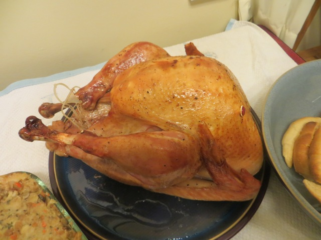 Our Thanksgiving turkey.
