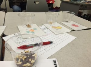 Seed sorting game with City Blossoms at Rooting D.C.