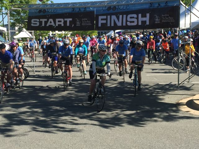 Bicyclists at the start of the Tour de Cookie