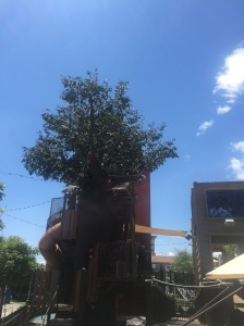 A giant, multi-story playground that looks like a treehouse