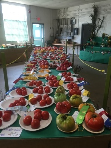 Table of tomatoes