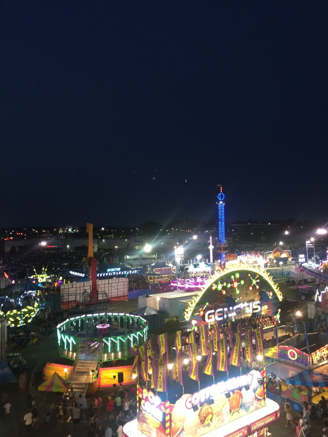 Viewfrom Ferris Wheel