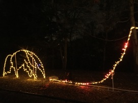 Anteater Zoolights