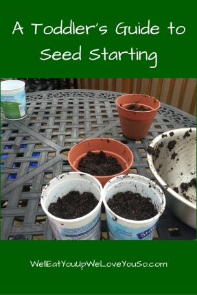 A Toddler's Guide to Seed Starting
