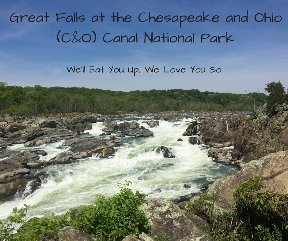 The Chesapeake and Ohio (C&O) Canal at Great Falls