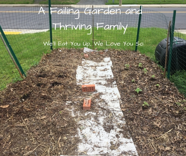 "Text: ""A Failing Garden and Thriving Family; We'll Eat You Up, We Love You So."" Photo of a garden with a few very small plants growing in it, surrounded by a fence and mulched with straw and leaves."