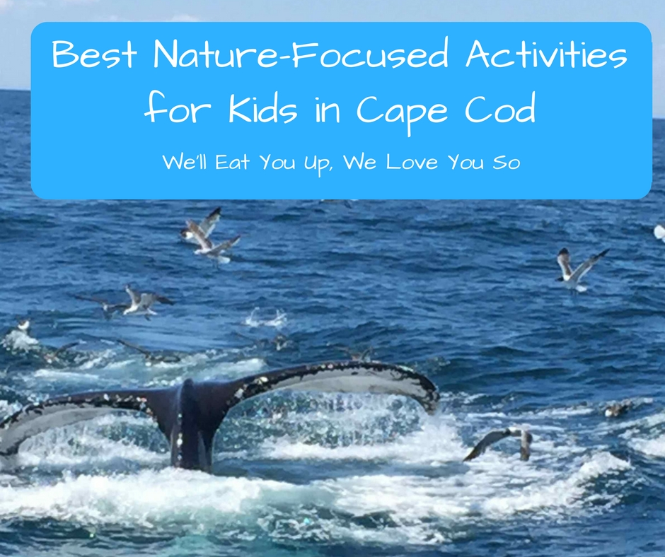 "Text: ""Best Nature-Focused Activities for Kids in Cape Cod; We'll Eat You Up, We Love You So."" Photo of whale tail sticking out of the water."