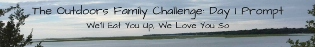 the-outdoors-family-challenge-day-1-prompt