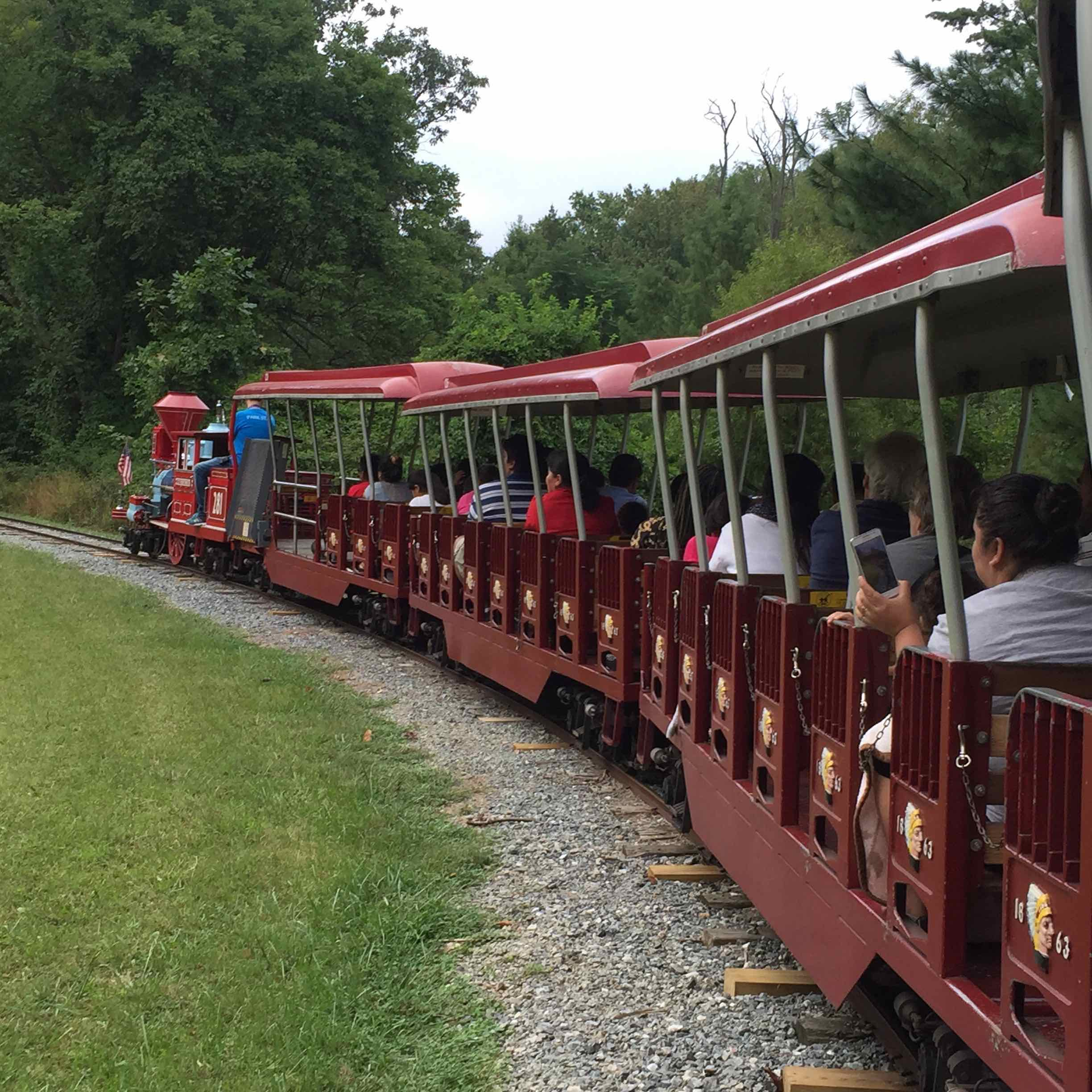 Photo: The miniature train at Wheaton Regional Park taking a turn.