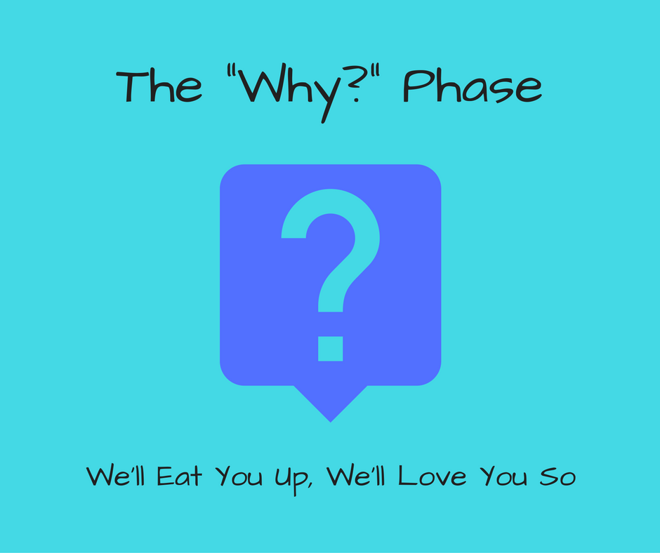 the-%22why%22-phase