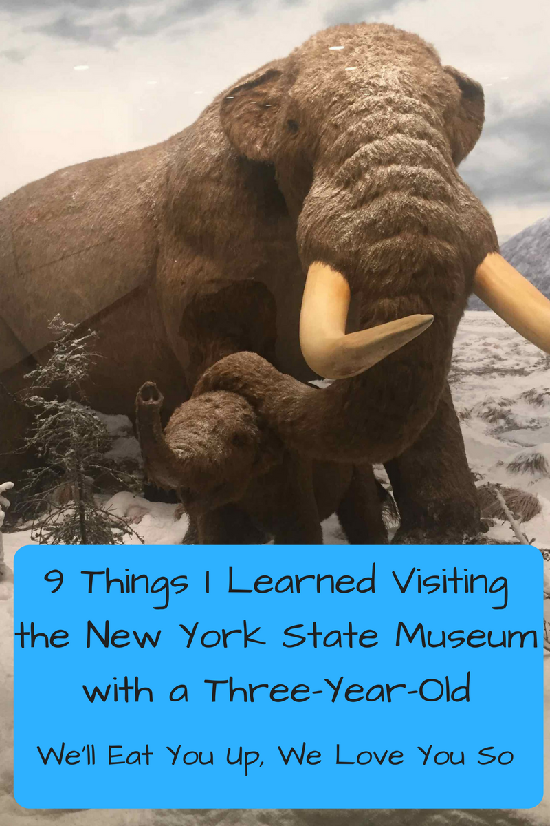 9-things-i-learned-visting-the-new-york-state-museum-with-a-three-year-old