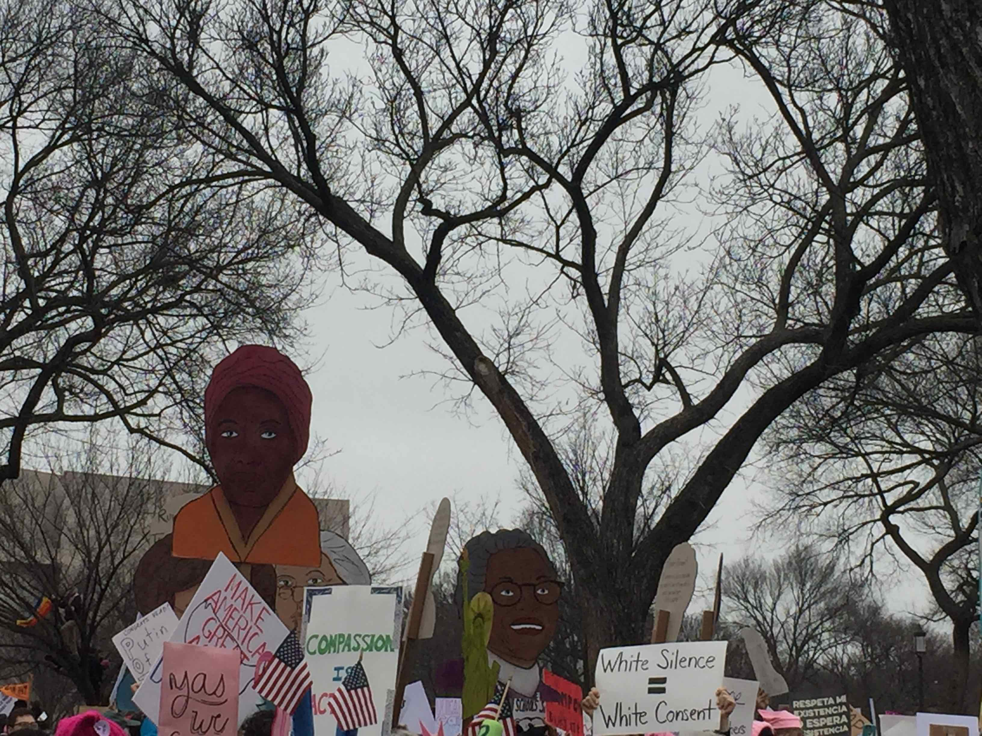 Cut out signs at Womens March on Washington