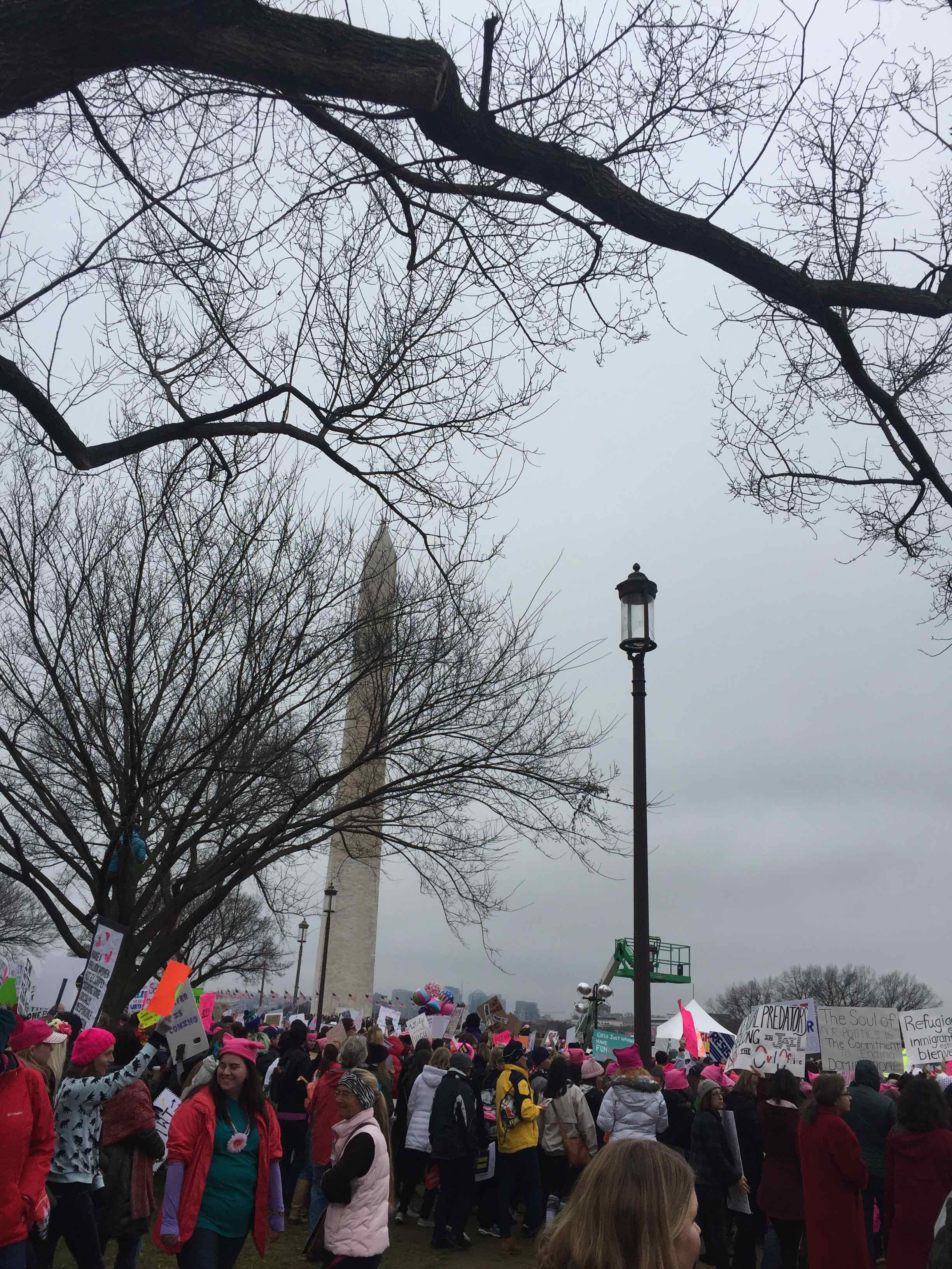 Women's March Washington Monument