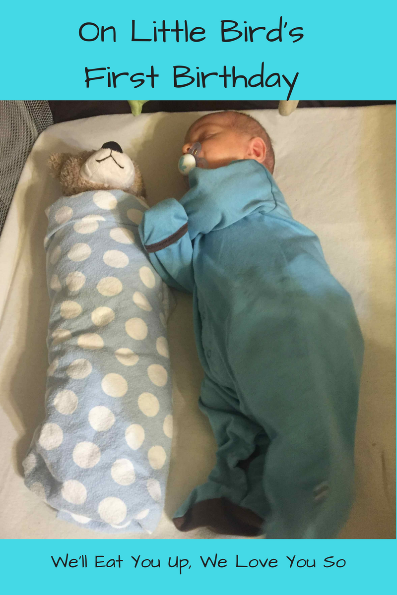 "Photo: Baby lying next to a swaddled teddy bear; Text: ""On Little Bird's First Birthday / We'll Eat You Up, We Love You So"""