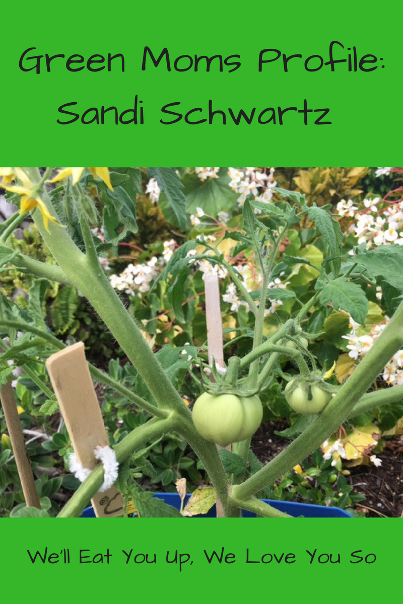 "Text: ""Green Moms Profile: Sandi Schwartz / We'll Eat You Up, We Love You So"" Photo: Green tomatoes growing on vines with flowers behind them"