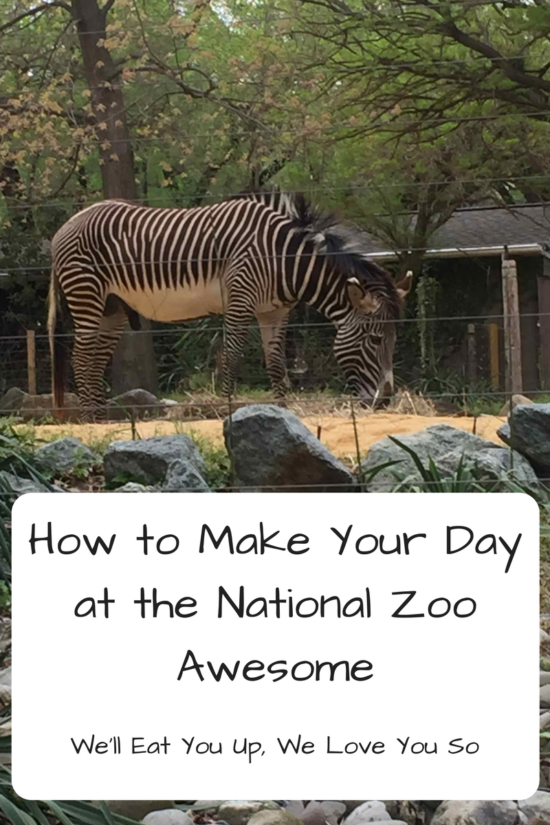 "Text: ""How to Make Your Day at the National Zoo Awesome / We'll Eat You Up, We Love You So"" Photo: Zebra eating grass"