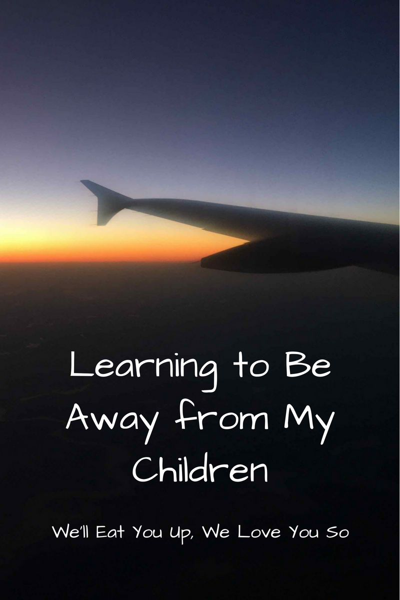 "Text: ""Learning to Be Away from My Children / We'll Eat You Up, We Love You So"" Photo: Airplane wing overlapping with a sunset."