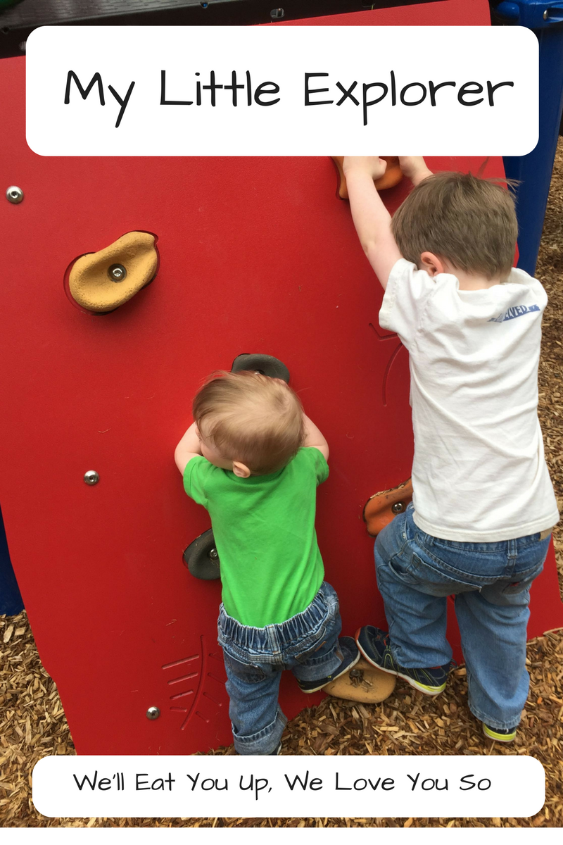 My Little Explorer / We'll Eat You Up, We Love You So; photo of two boys climbing a playground rock wall