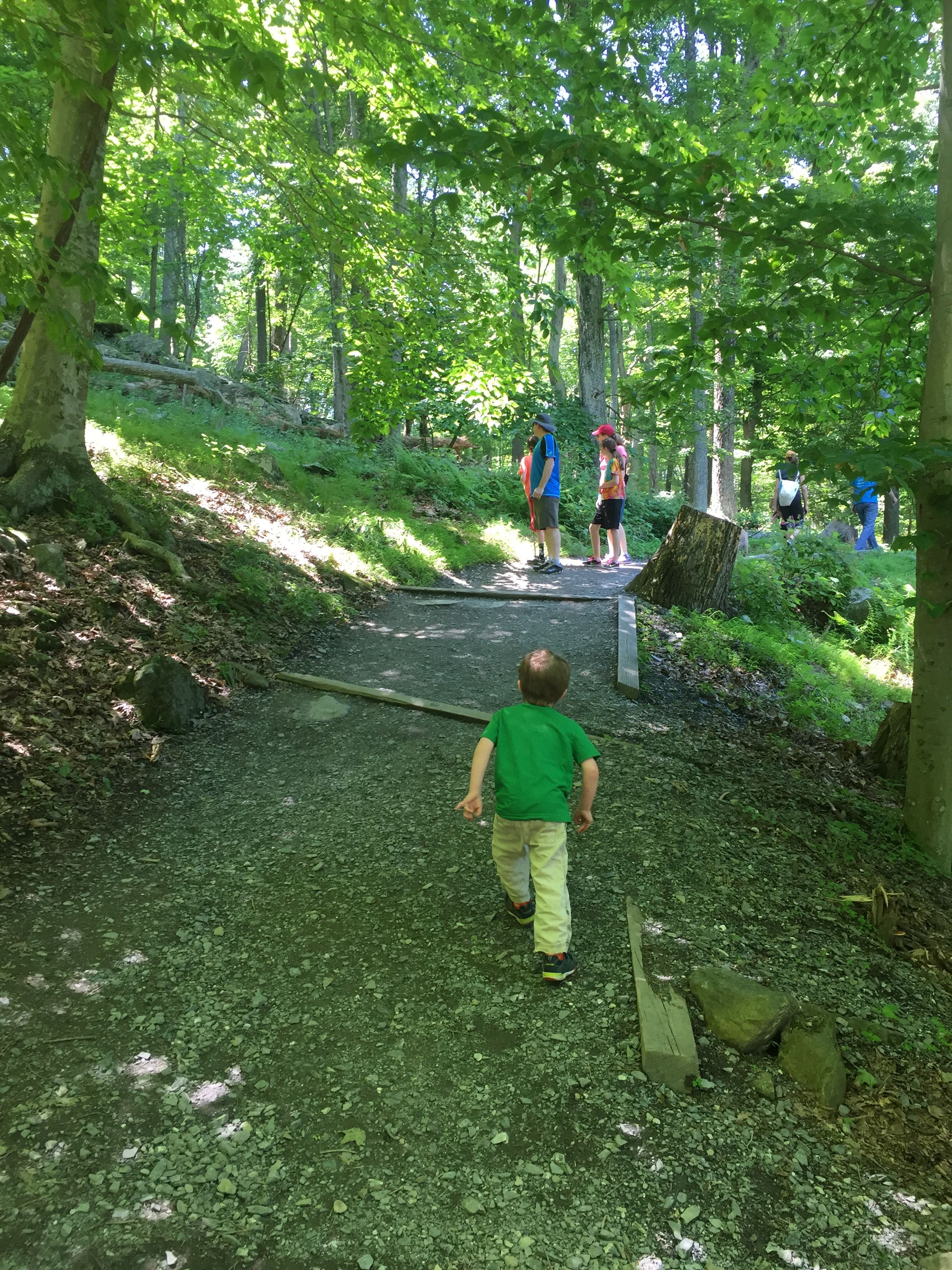 Photo of the main trail to Cunningham Falls State Park, with a three-year-old hiking up it.